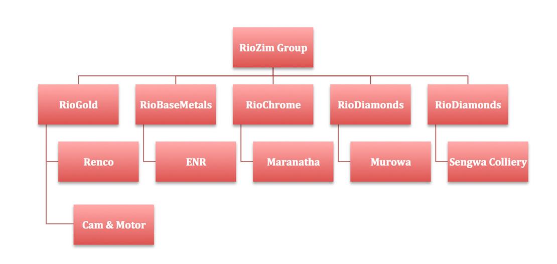 riozim_structure